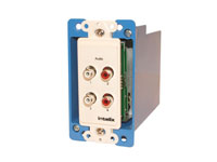 Intelix AVO-A4-WP-F Dual Stereo Audio Wallplate Balun, Right